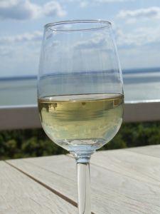 cours oenologie vin